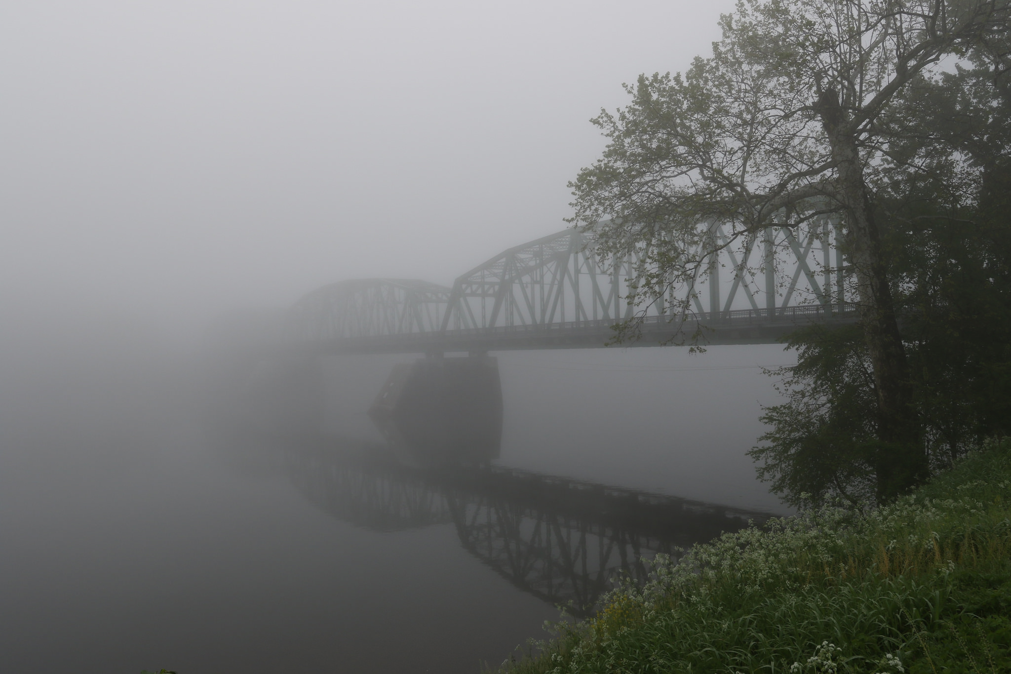 Another foggy morning in Milford