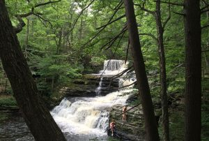 Waterfalls at Child's Park in the Delaware Water Gap - submitted by Kelly Hogan