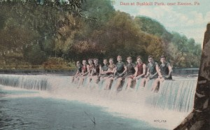 BushkillParkpostcard3-3600
