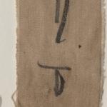 fragment of linen mummy 5 front